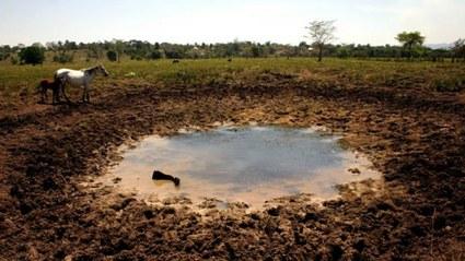 Sequía 2021