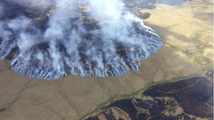 artico Matt Snyder Reuters en ecoosfera.com.jpg