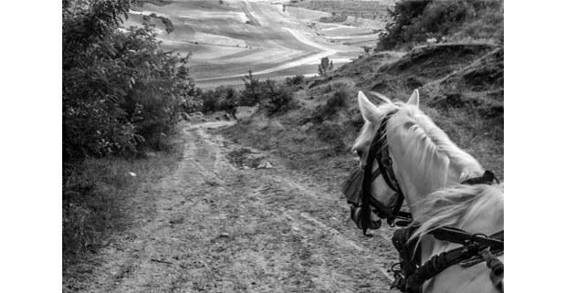 """De la serie """"Gitanos en Transilvania"""". Foto: Nadja Massün"""